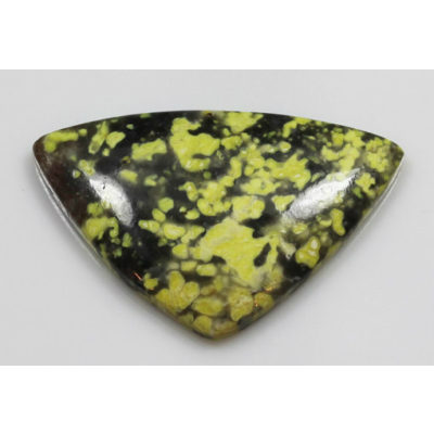 Lizard Stone